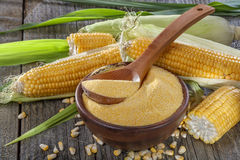 Polenta delle sabbie di cereale Fotografie Stock
