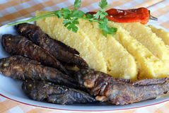 Polenta with grilled fish Royalty Free Stock Photography
