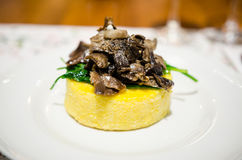 Polenta with honey fungus and spinach Stock Images