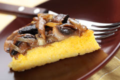 Polenta with mushrooms. And onion closeup royalty free stock photo