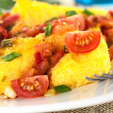Polenta with Tomato. Polenta slices with Hogao, also called Criollo Sauce, which is a Colombian sauce made of tomato, onion and cilantro (Selective Focus, Focus stock photography