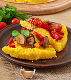 Polenta with vegetables Stock Images