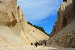 Polera klippor i reserven Royaltyfria Bilder
