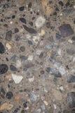 Polerad betong Royaltyfria Bilder