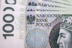 polerad zloty Fotografering för Bildbyråer