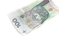 polerad zloty Arkivbild