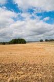 Polerade åkerbruka fält Fotografering för Bildbyråer