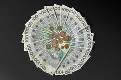 Polerade sedlar Polsk zloty PLN Royaltyfria Bilder
