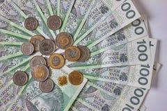 Polerade sedlar Polsk zloty PLN Arkivbild