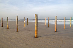 Poles on beach Stock Images