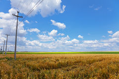 Poles in the fields Royalty Free Stock Photography