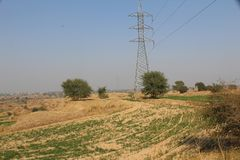 Poles going through the fields in the country of Punjab. A beautiful view of fields and crops in the country of Punjab, india, Pakisan, asia, africa, europe Royalty Free Stock Image