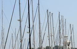 Poles and masts masters of luxury yachts and motor boats moored Stock Images