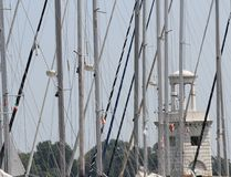 Poles och mastförlage av lyxiga förtöjde yachter och motoriska fartyg Royaltyfri Foto