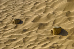 Poles in sand Royalty Free Stock Photos