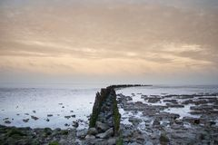 Poles in the sea for breaking the waves stock photo