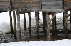 Poles of a stilt house on the icy soil Stock Photography