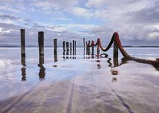 Poles from the submerged pier stock photos