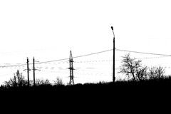 Poles, trees and wires Stock Photos