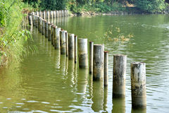Poles in water as line Royalty Free Stock Image