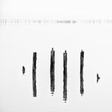 Poles in the water -  silence concept Royalty Free Stock Images