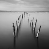 Poles in the water -  silence concept Stock Images