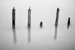 Poles in the water -  silence concept Stock Image