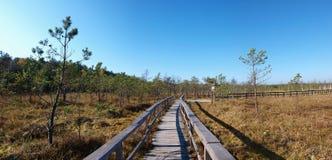 Poleski国家公园,波兰 免版税库存图片