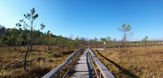 Poleski National Park, Poland Royalty Free Stock Images