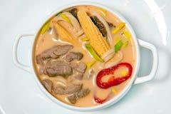 Polewka z spices2 Zdjęcie Stock