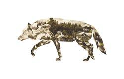 Poli collage basso: Siluetta del lupo e della foresta di conifere Immagini Stock