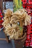 Polia de Rye no vaso grande Imagem de Stock Royalty Free