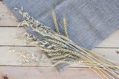 Polia do trigo e da aveia no fundo de madeira Imagens de Stock