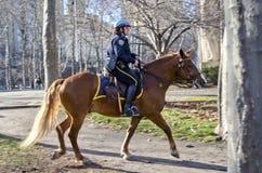 Policía de New York City Imagen de archivo
