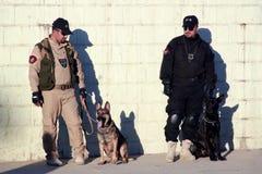 Policía iraquí leashing su perro K9 Imagenes de archivo