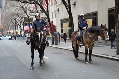 Policía Nueva York del caballo Foto de archivo