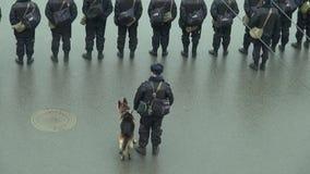 Policía ruso con un perro del servicio almacen de video