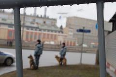 Policía y perros rusos en marcha contraria Imagenes de archivo