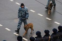 Policía y perros rusos en marcha contraria Fotos de archivo