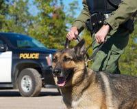 Police. Photo stock