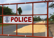 Police barrier protects drying corn on the road. Stock Photo