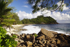 Police Bay, Tropical paradise, Seychelles Royalty Free Stock Photo