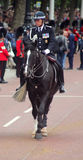 Police Commissioner on Horseback. Trooping The Colour London england stock images