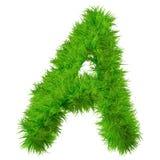 Police d'herbe verte, d'eco ou d'écologie Images stock