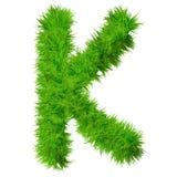 Police d'herbe verte, d'eco ou d'écologie Photographie stock