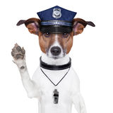 Police dog. Asking to stop with cap Stock Photo