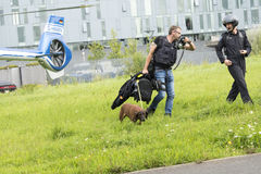Police dog pick up the scent Stock Photos