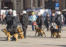 Police with dogs. Police and dogs in action on the  main market in Krakow. Observation of football fans Royalty Free Stock Photos
