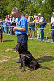 Police dogs show their discipline Royalty Free Stock Photos