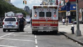 New York City Police and Fire Department Royalty Free Stock Images